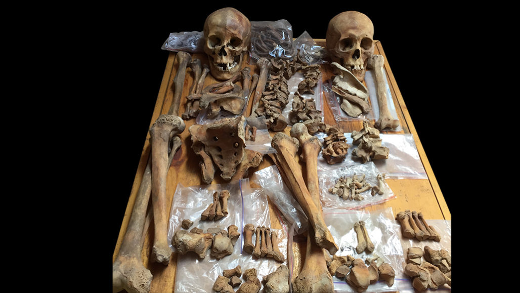 skeletons in Mongolia tomb
