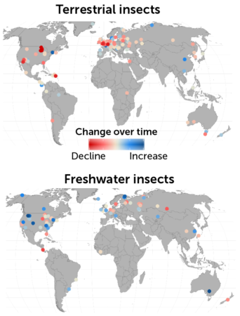 map of insect increases and decreases