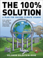 cover of The 100% Solution