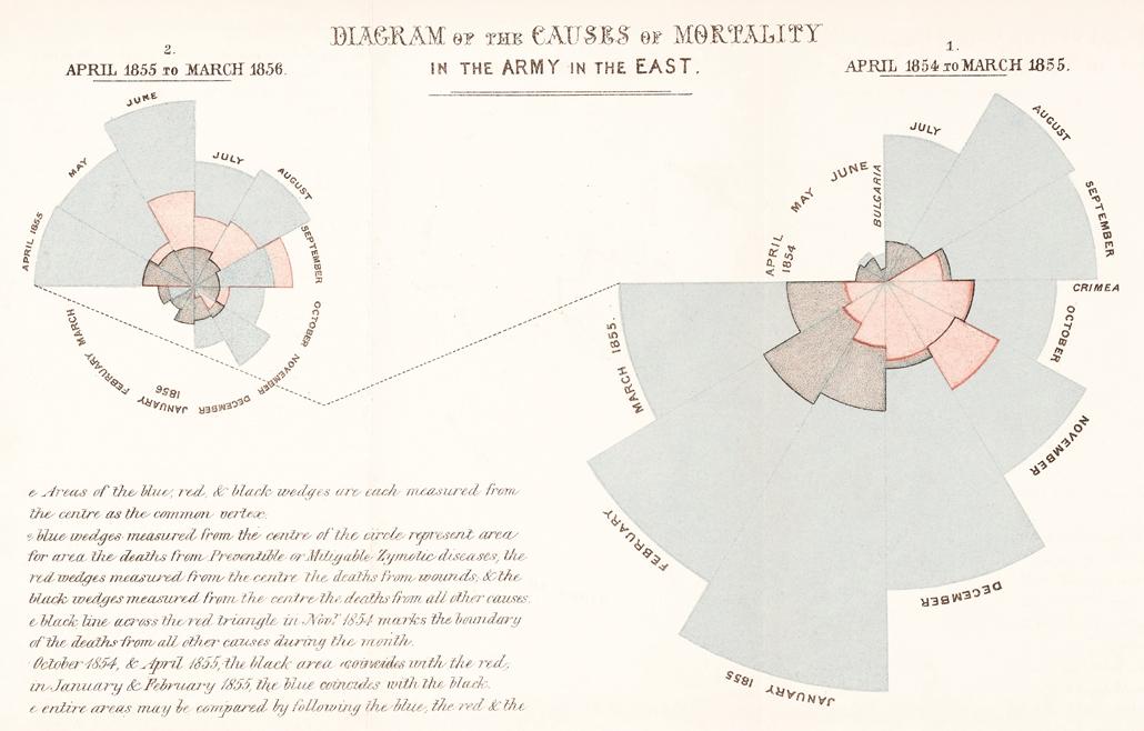 Crimean War rose diagram