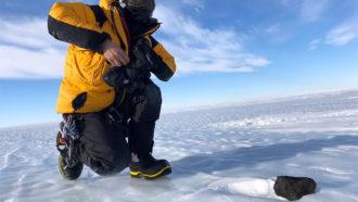 meteorite in Antarctica