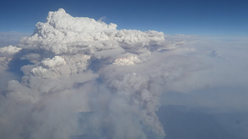 pyrocumulonimbus cloud