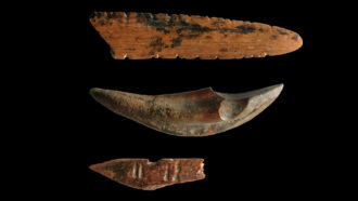 artifacts from Sri Lanka