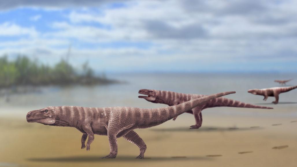 illustration of crocodile ancestors walking on two legs