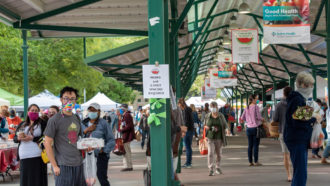 farmers market in Davis, California