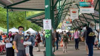 farmers market in Davis, California