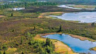 Yamal region of Siberia