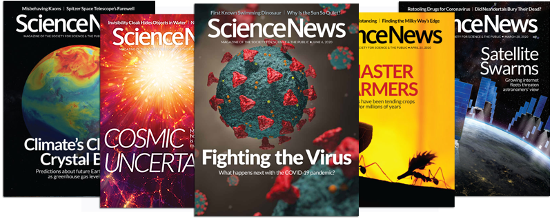 2020 Science News covers