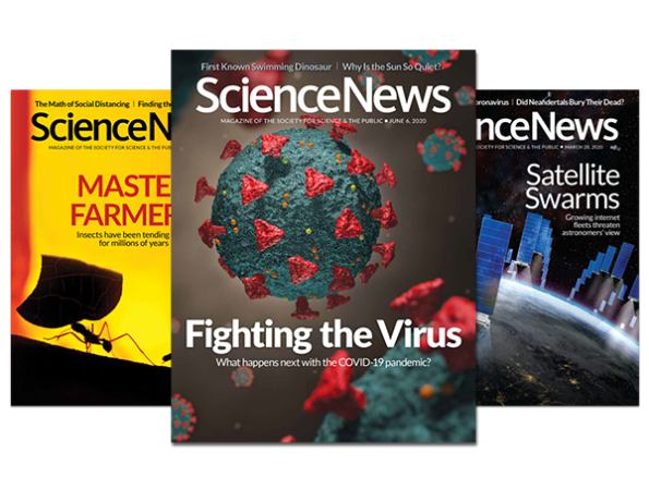 Science News magazine covers 2020