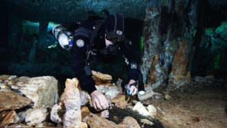 diver in underwater Mexican cave