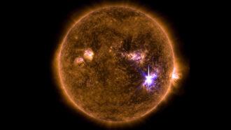 Large solar flare
