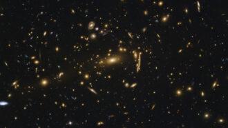 MACSJ1206.2-0847 galaxy cluster