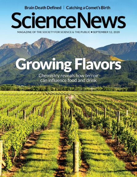 cover of September 9, 2020 issue