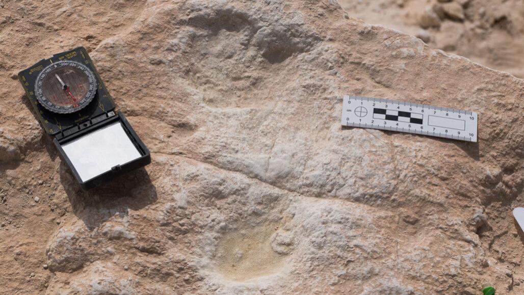 Ancient human footprints from the Arabian Peninsula