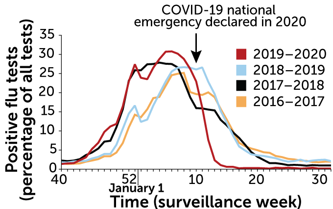 Graph of percent positive flu tests in the United States