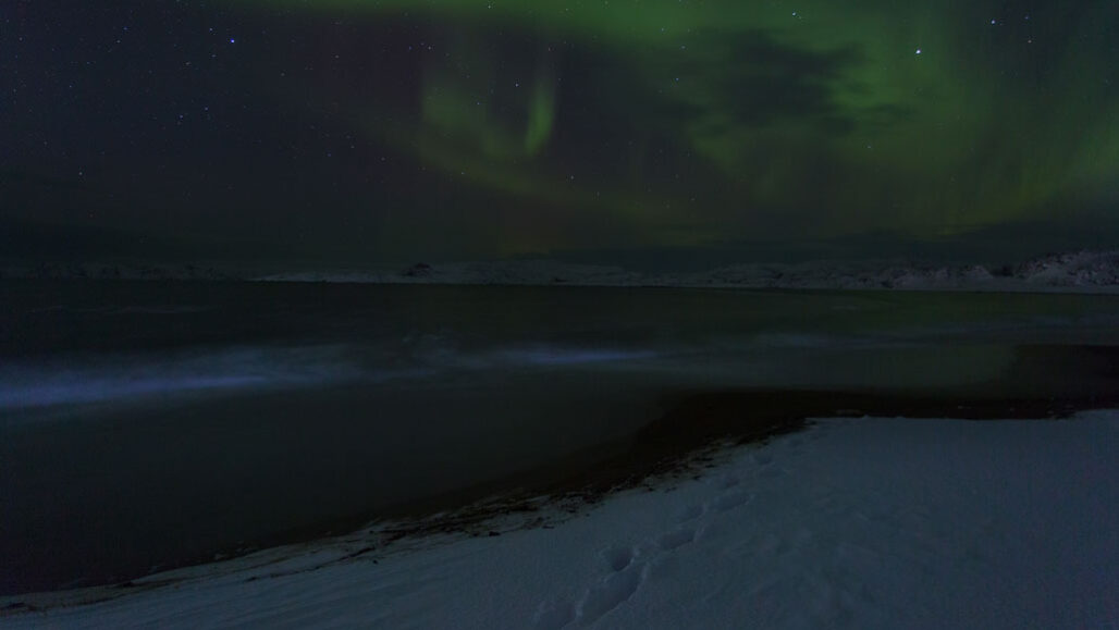 Arctic winter under northern lights