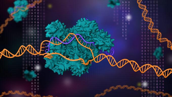 illustrated representation of the gene editing tool CRISPR/Cas9