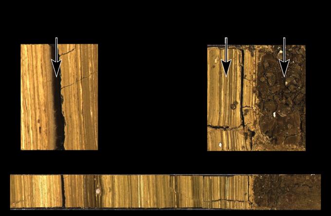 photographs of sediment cores