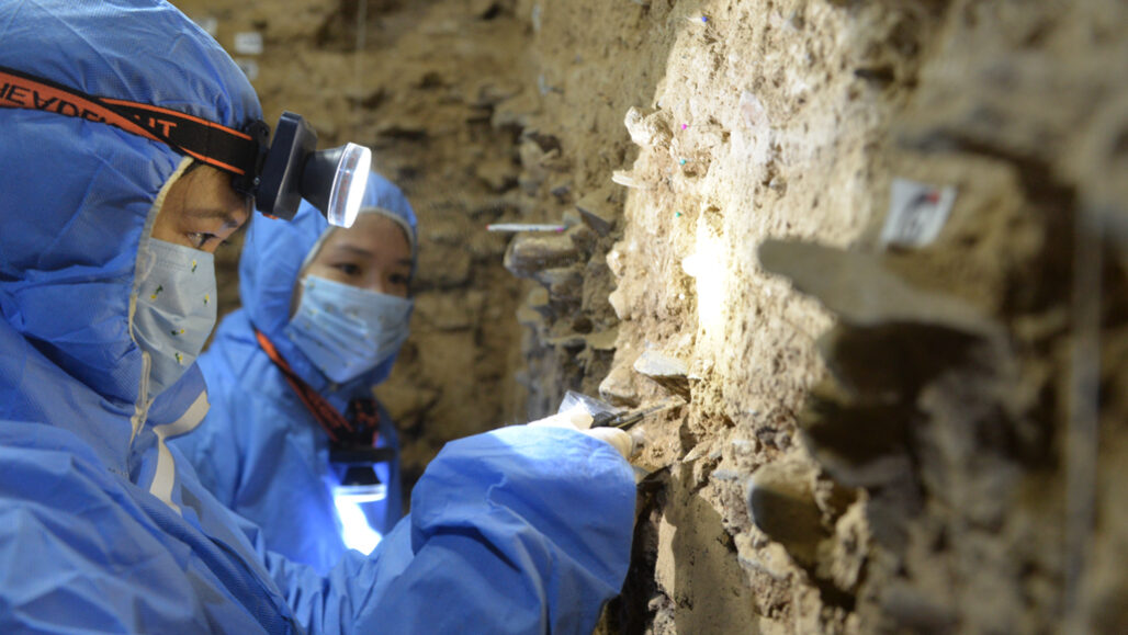 scientists collecting cave samples