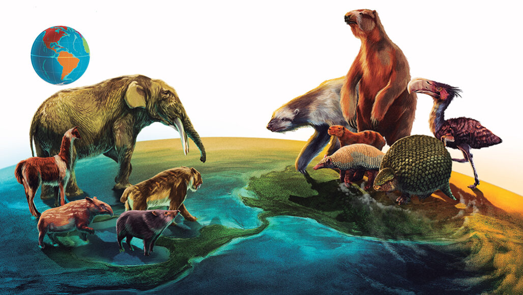 ancient North American and South American animals