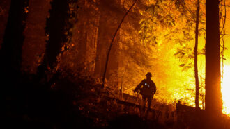 firefighter in California wildfires
