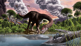 illustration of a long-necked dinosaur leaning down to drink from a river