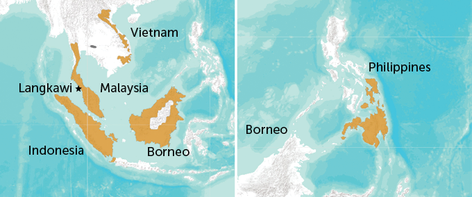 a map of Southeast Asia with the colugos' range highlighted
