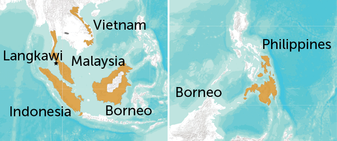a map of Southeast Asia with the colugos' range highlighte