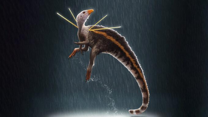 Ubirajara jubatus feathered dinosaur