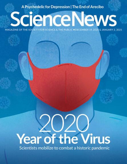 December 19, 2020 cover