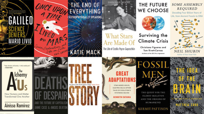 2020 favorite books covers