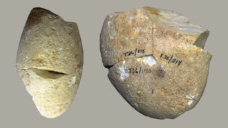 round stone, the oldest known abrading tool