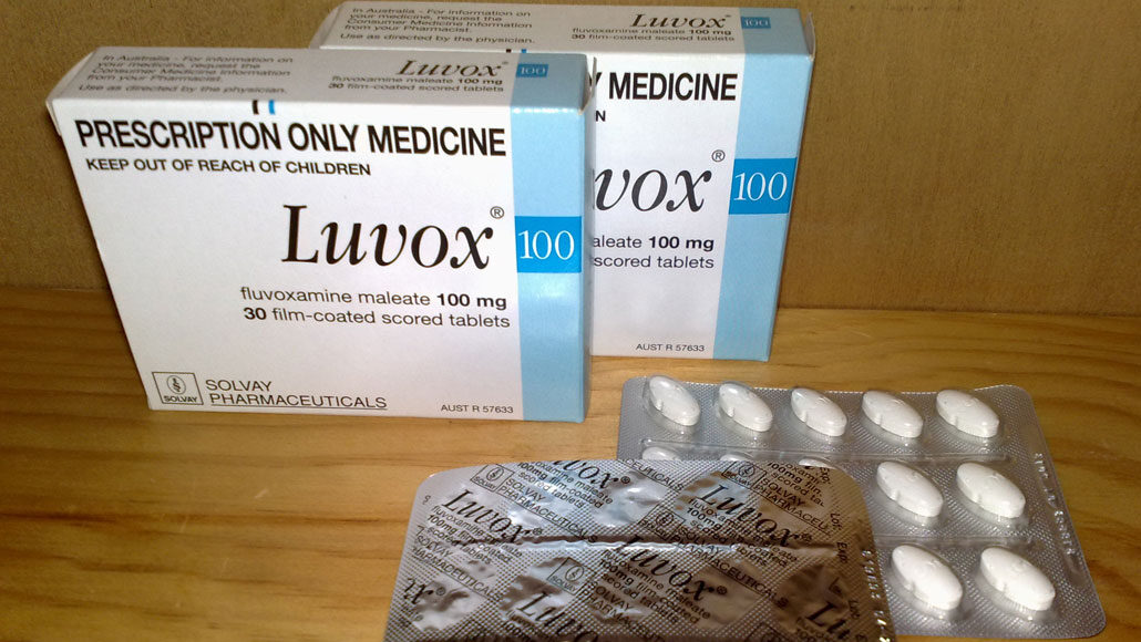 boxes of fluvoxamine tablets