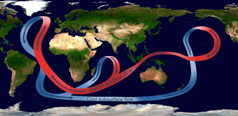 illustration of the great ocean conveyor belt