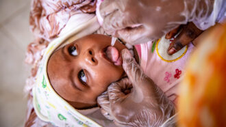 baby getting polio vaccine in Mauritania