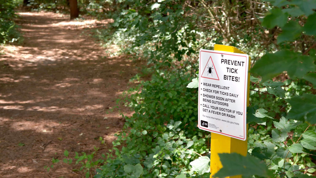 A sign next to a hiking path in the woods