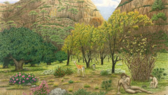 painting of a Neandertal man and child on the Iberian plains