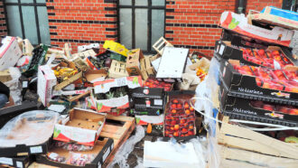 The world wasted nearly 1 billion metric tons of food in 2019