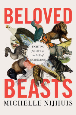 Beloved Beasts cover