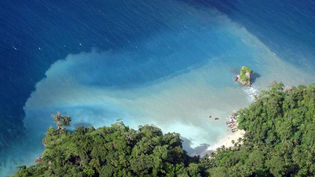 beach in the Andaman Island