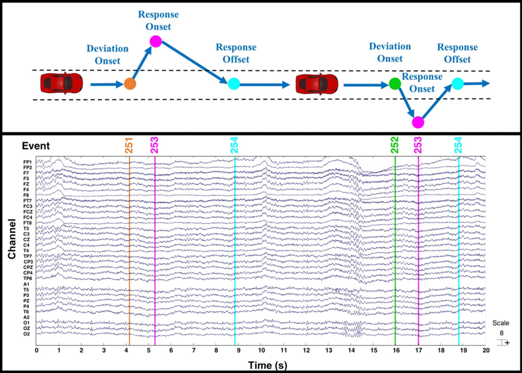 an EEG readout shows reactions during swerving events