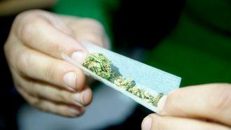hands rolling a marijuana joint