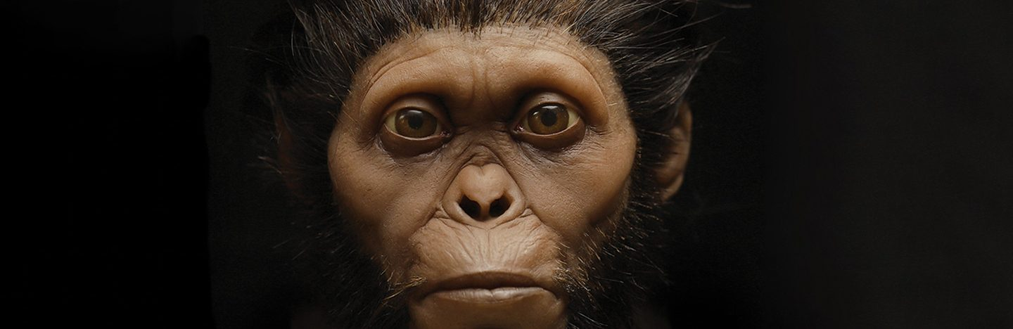 a dramatic reconstruction of an ancient hominid face with coarse black hair