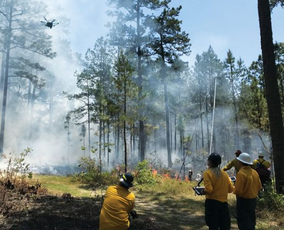 researchers piloting a drone above a prescribed burn