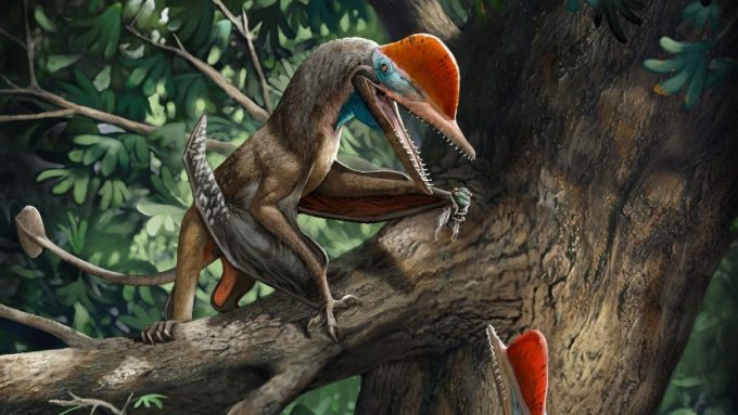 illuistration of a pterosaur with opposable thumbs