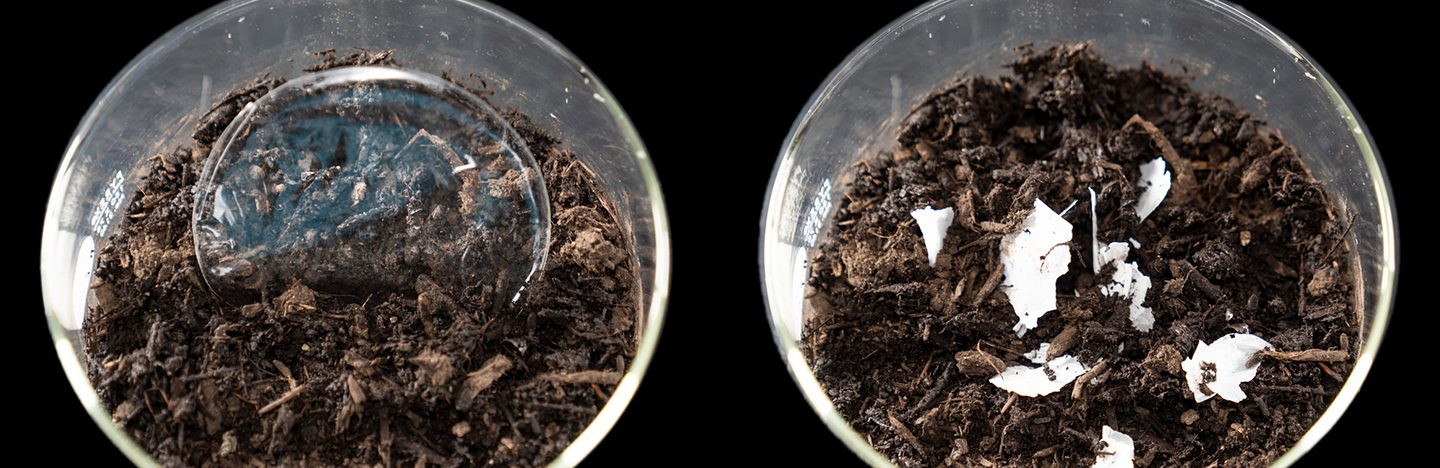 before and after images of dish of compost breaking down plastic