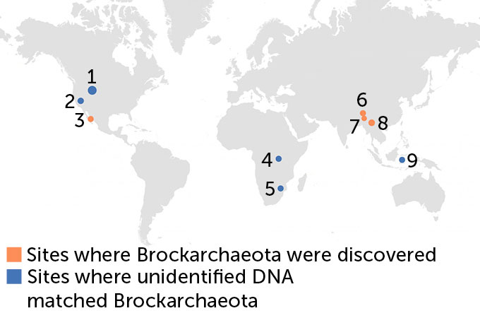 map showing where Brockarchaeota have been found