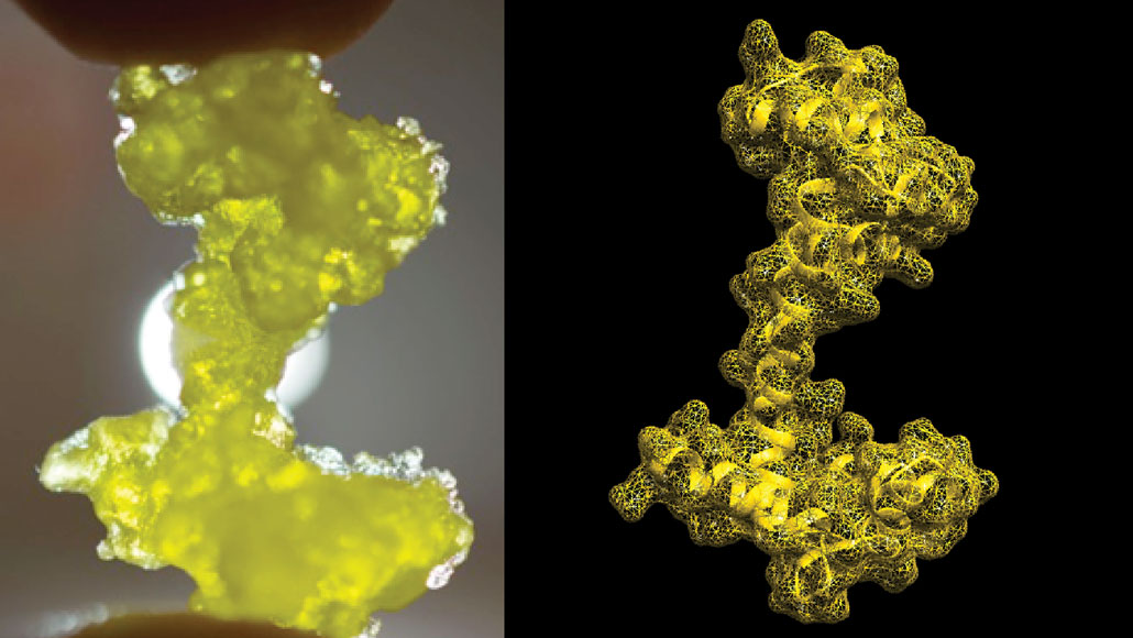 side by side images of a yellow, anchor-shaped object
