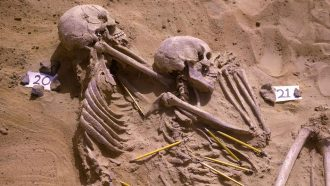 photo of two skeletons on their sides in the fetal position, half immersed in the soil
