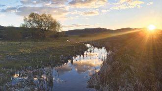 stream in Idaho
